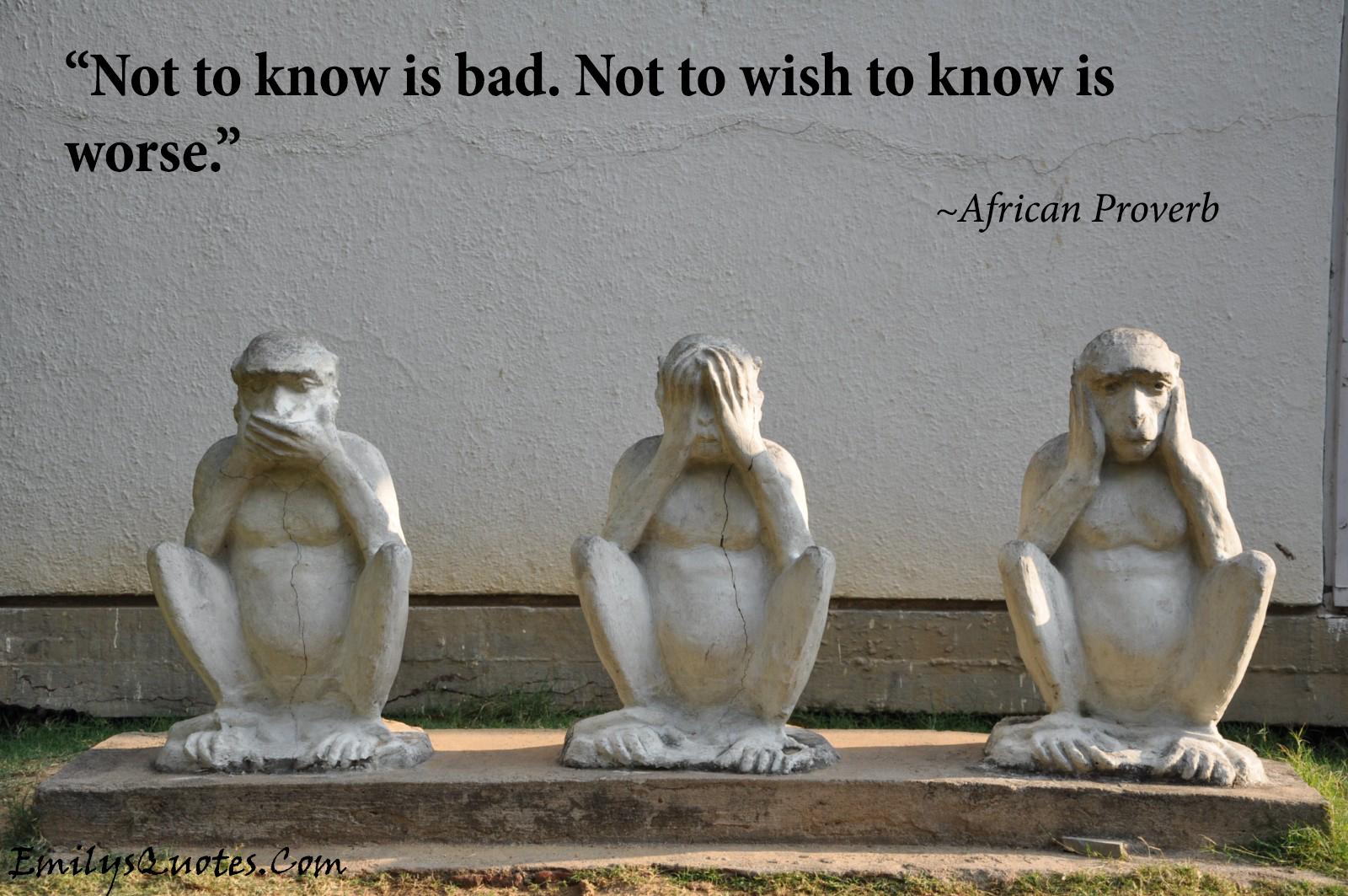 EmilysQuotes.Com - African Proverb, ignorance, intelligence