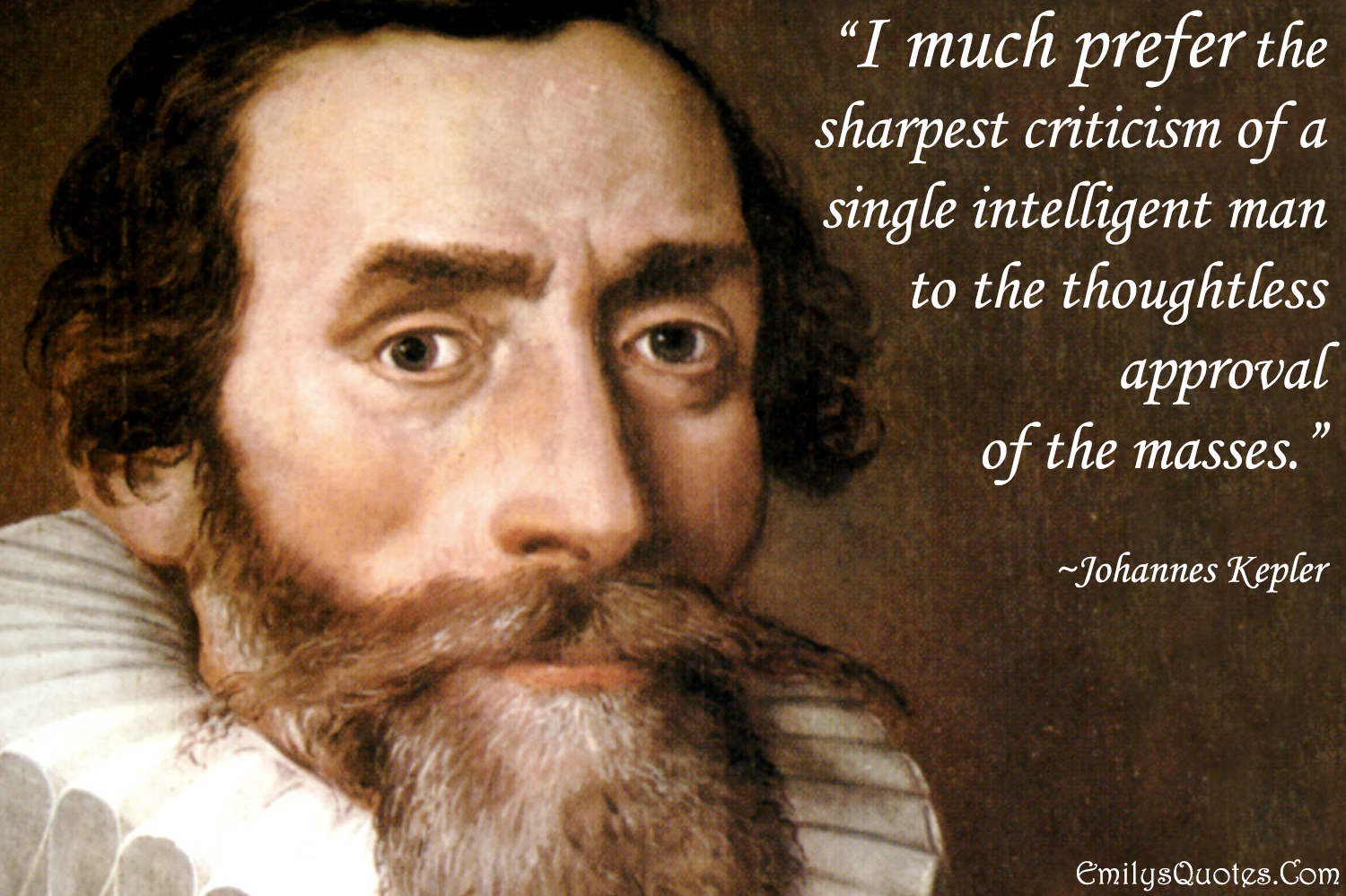 EmilysQuotes.Com - criticism, intelligence, approval, Johannes Kepler, experience