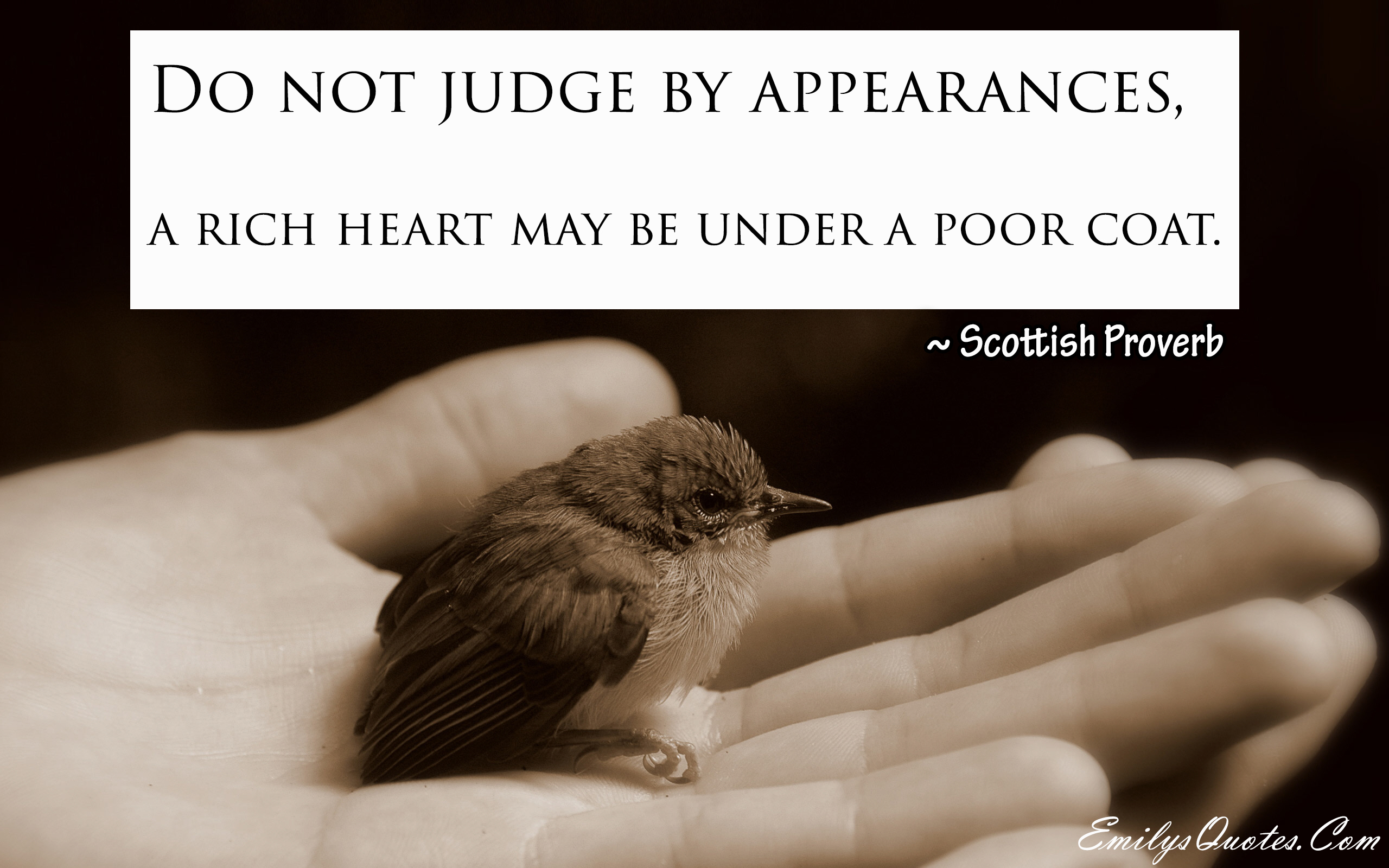 EmilysQuotes.Com - kindness, heart, judge