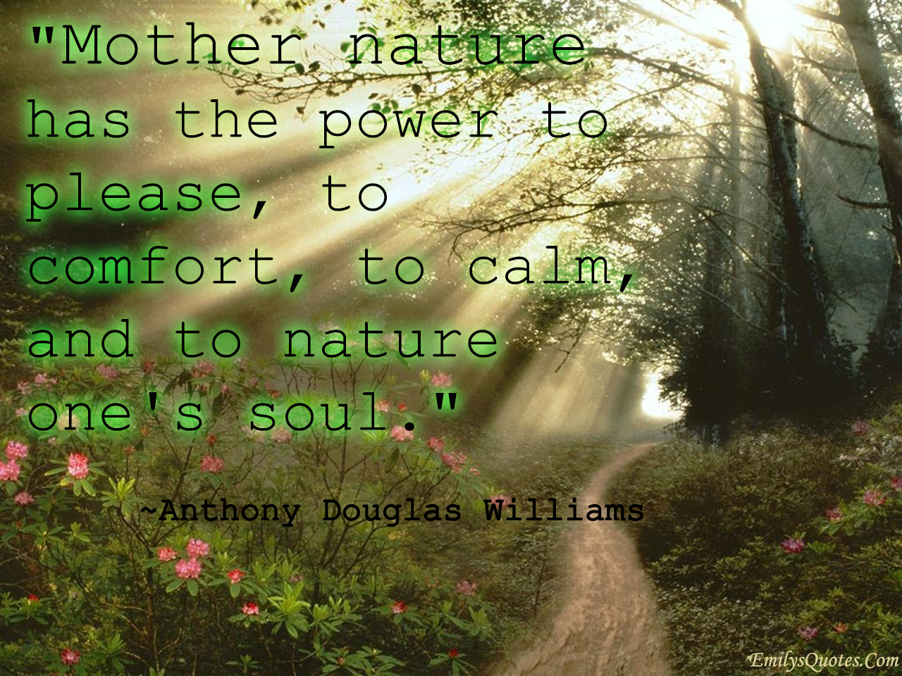 EmilysQuotes.Com - positive, nature, power, change, Anthony Douglas Williams
