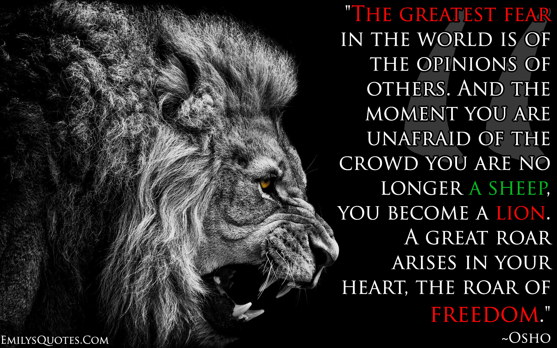 EmilysQuotes.Com - wisdom, freedom, fear, amazing, great, lion, Inspirational, motivational