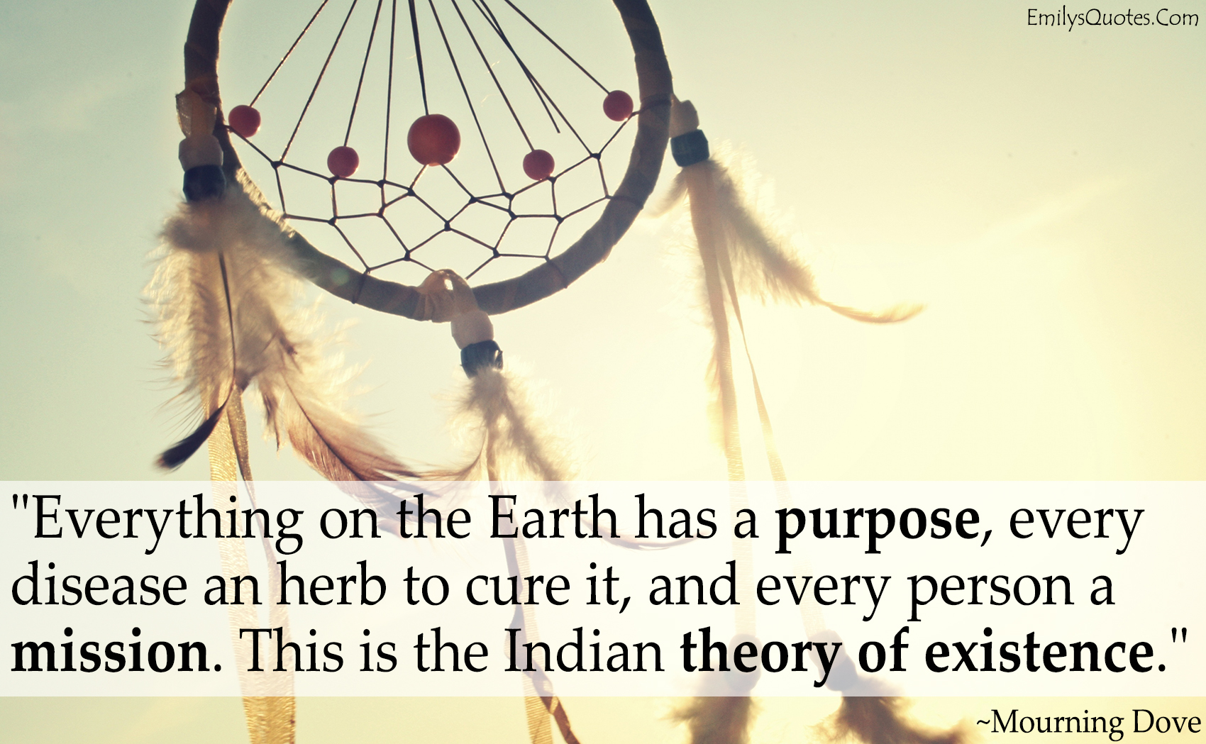 Great Positive Quotes About Life Everything On The Earth Has A Purpose Every Disease An Herb To