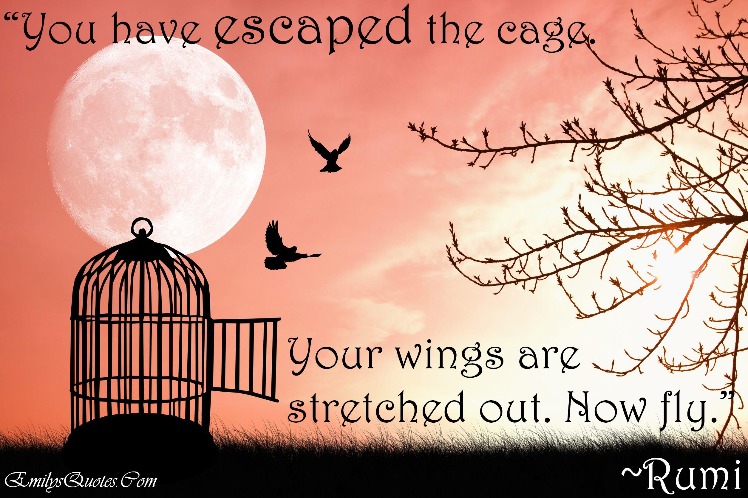 EmilysQuotes.Com - freedom, amazing, great, Rumi, Encouraging, Inspirational