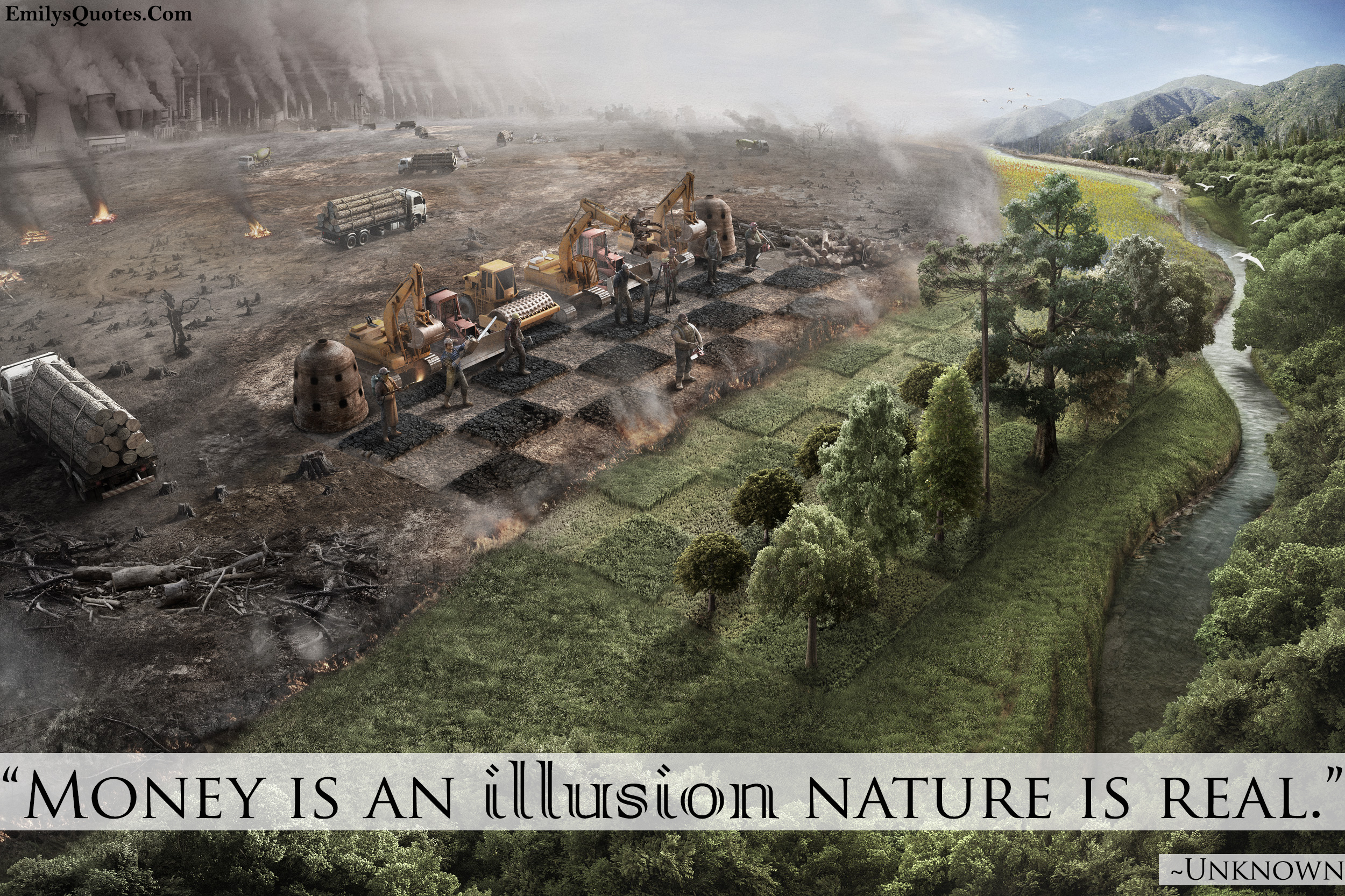 money is an illusion nature is real popular