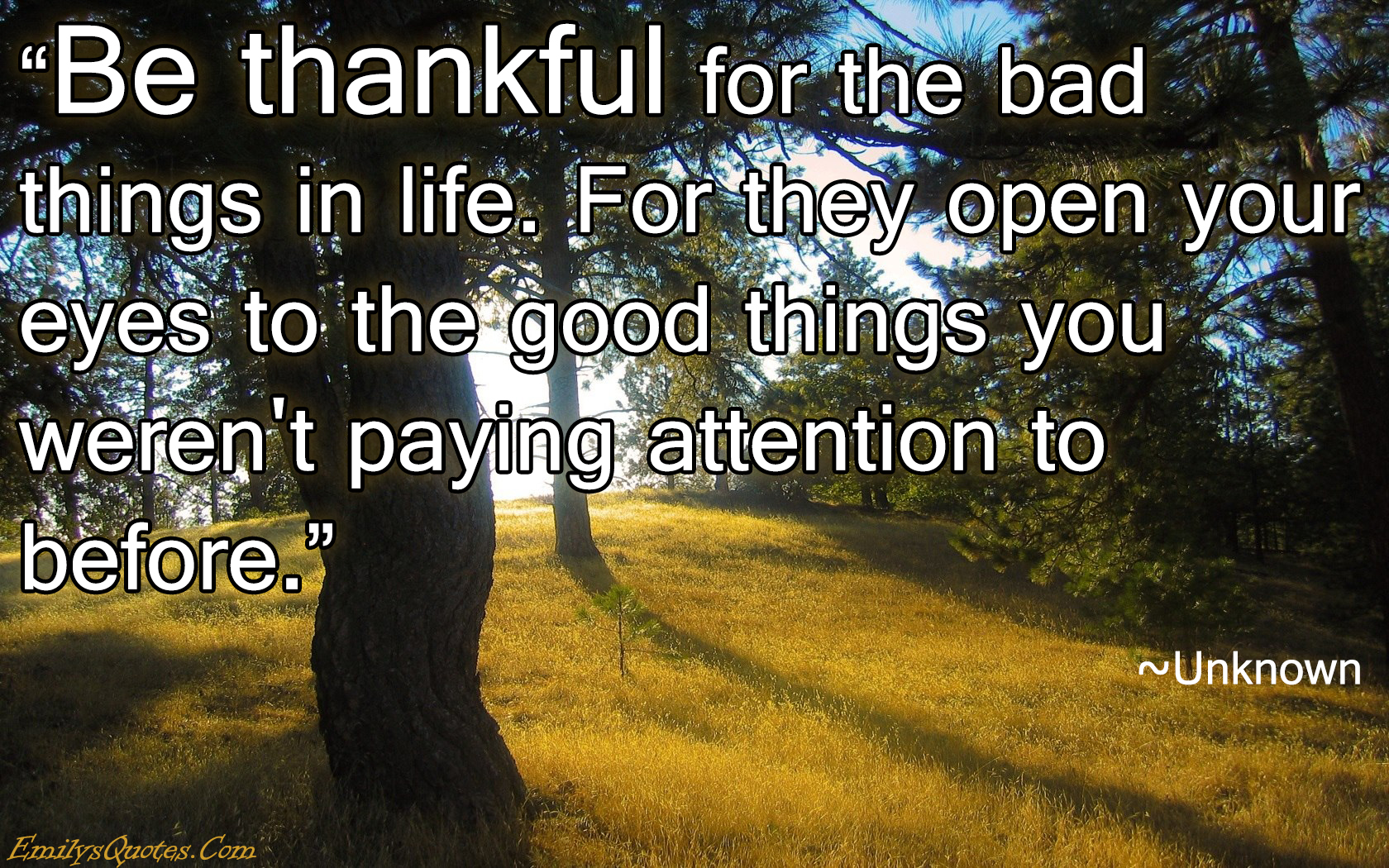 Unknown Quotes About Life Be Thankful For The Bad Things In Lifefor They Open Your Eyes To