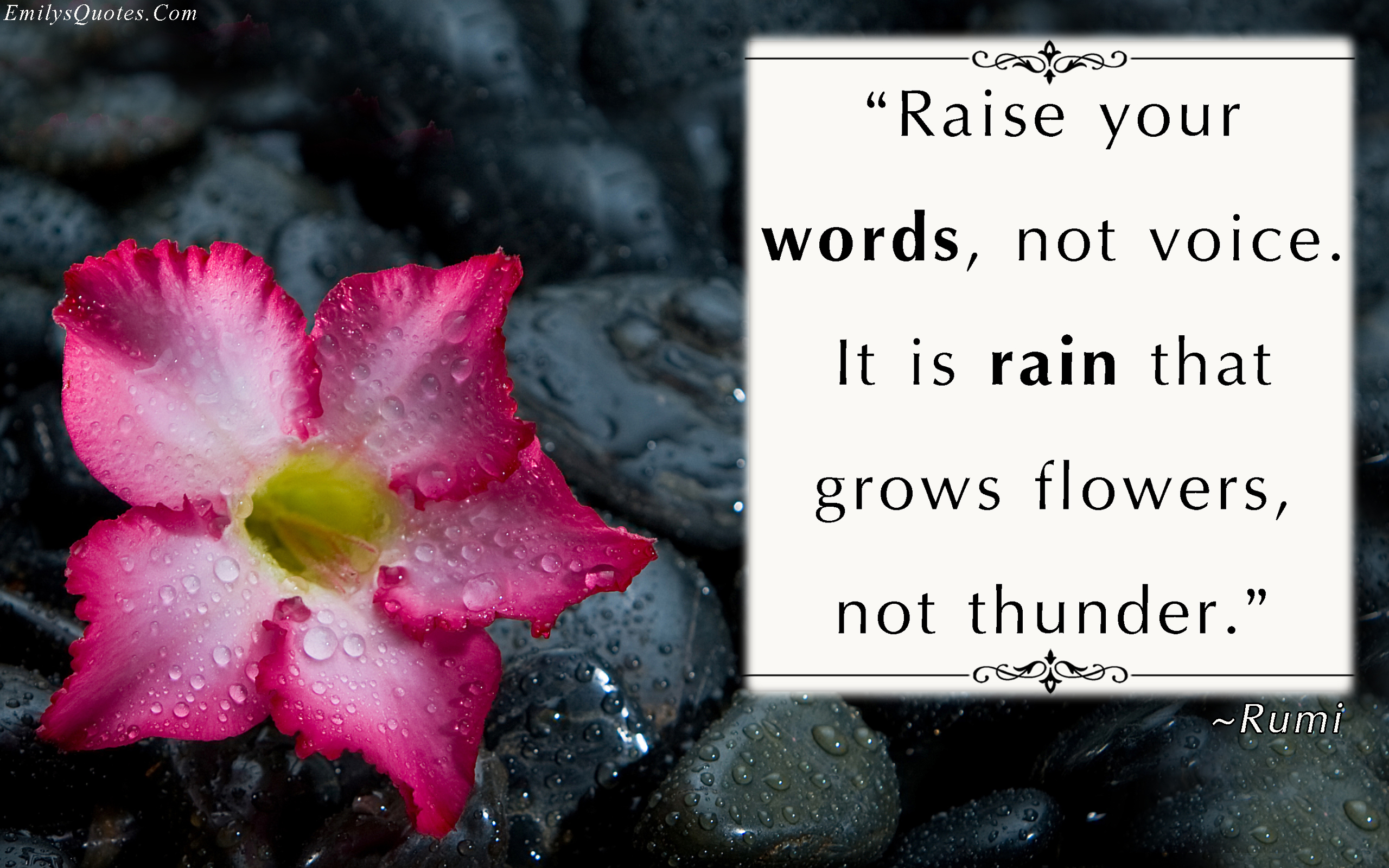 Raise Your Words Not Voice It Is Rain That Grows Flowers Not