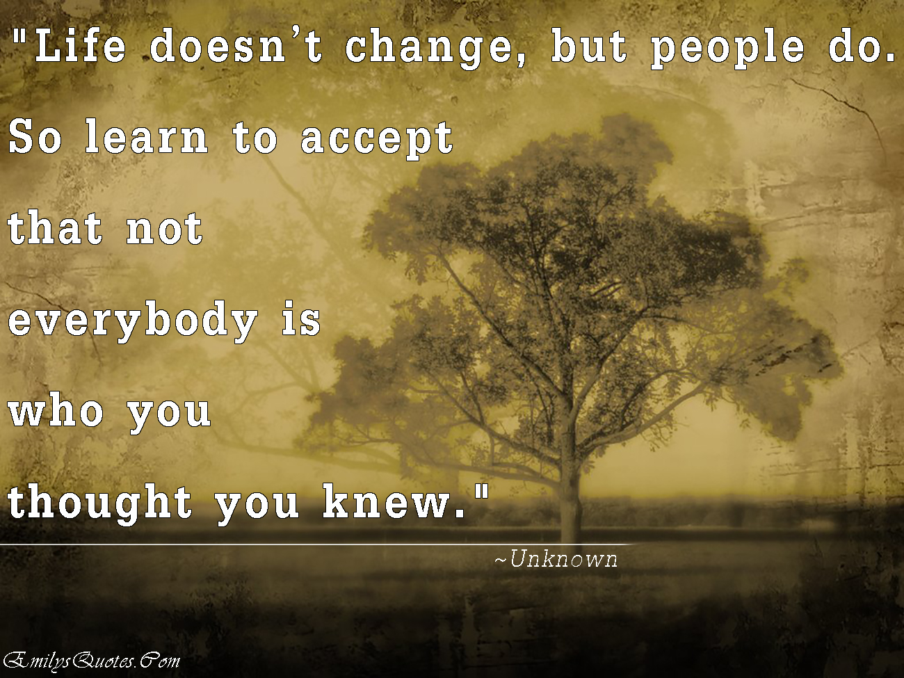 When You Learn To Accept - thisquotes.blogspot.com