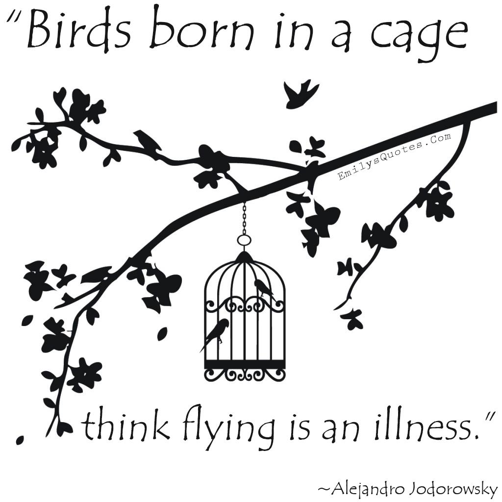 EmilysQuotes.Com - mind, cage, freedom, sad, negative, Alejandro Jodorowsky, experience, wisdom, intelligence