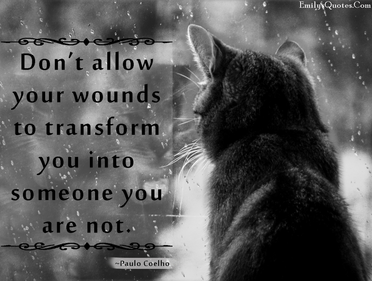 EmilysQuotes.Com - wounds, pain, hurt, change, transform, be yourself, Paulo Coelho