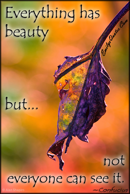 EmilysQuotes.Com - beauty, wisdom, understanding, see, Confucius