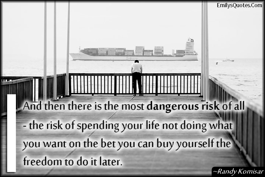 EmilysQuotes.Com - danger, risk, threat, life, time, freedom, understanding, consequences, Randy Komisar