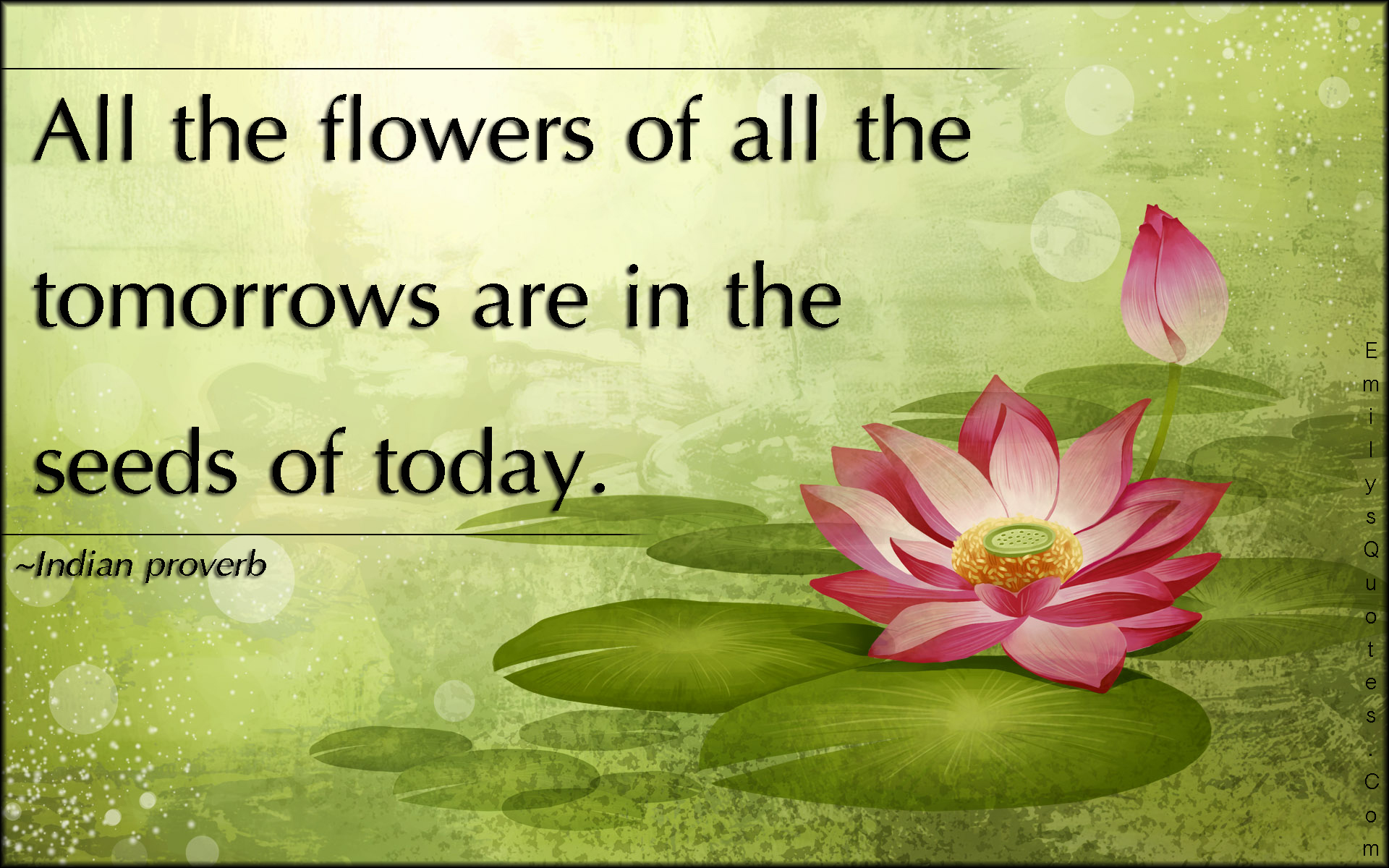 Wisdom About Life Quotes All The Flowers Of All The Tomorrows Are In The Seeds Of Today