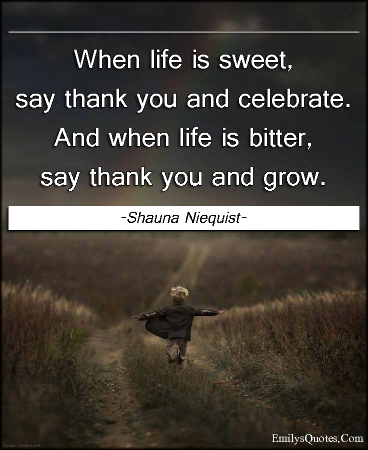 Popular Sayings About Life Endearing When Life Is Sweet Say Thank You And Celebrateand When Life Is