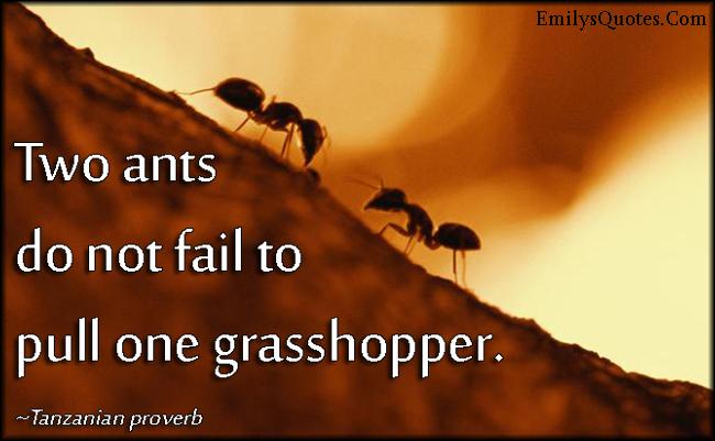 EmilysQuotes.Com - ants, fail, grasshopper, wisdom, strength, unity, African proverb, Tanzanian proverb