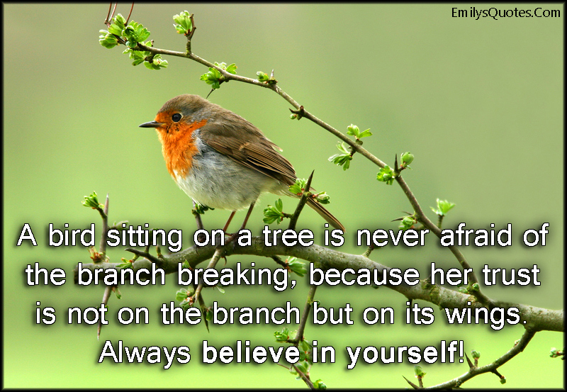 EmilysQuotes.Com - bird, fear, trust, wings, branch, believe in yourself, inspirational, encouraging, unknown