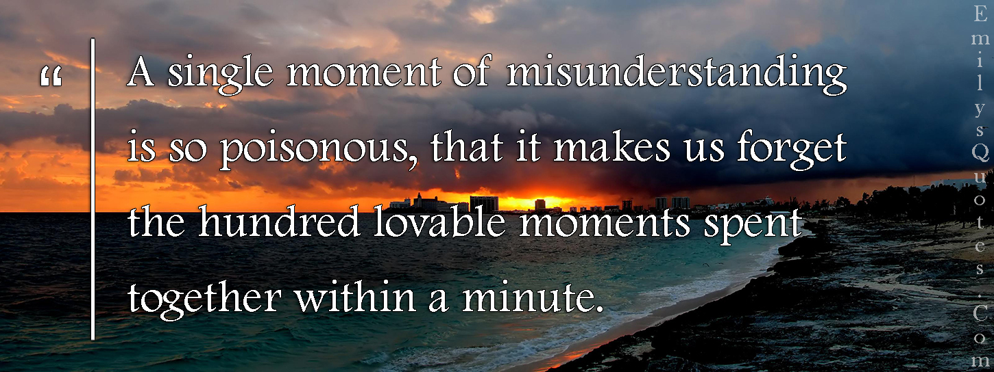 Quotes About Friendship Misunderstanding A Single Moment Of Misunderstanding Is So Poisonous That It Makes