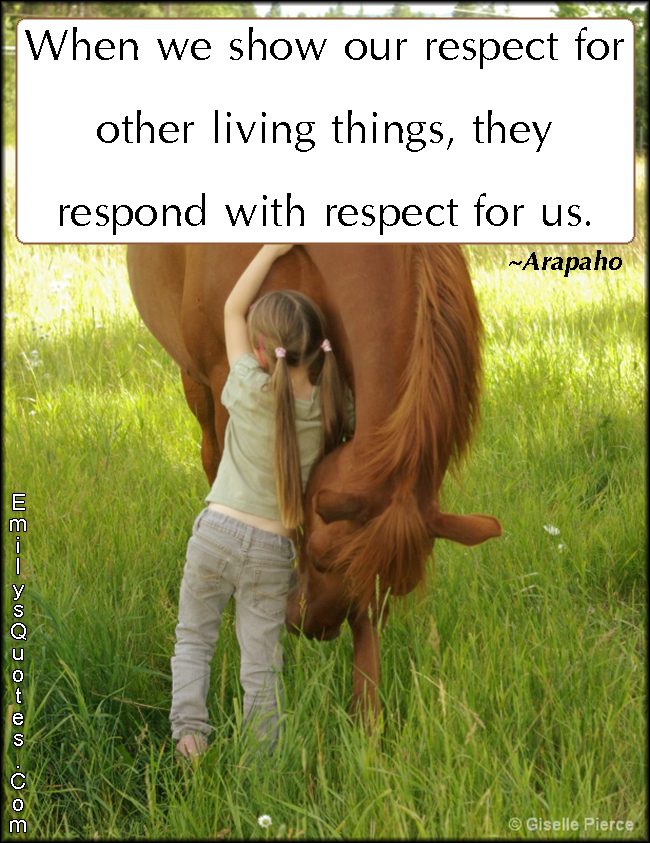 When We Show Our Respect For Other Living Things They Respond With Us