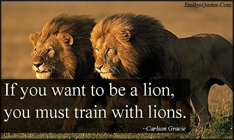 EmilysQuotes.Com - sport, lion, need, train, motivational, inspirational, strong, Carlson Gracie