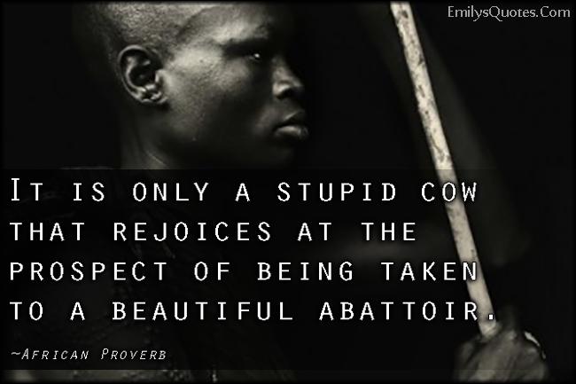 EmilysQuotes.Com - stupid, rejoice, understanding, wisdom, threat, African Proverb