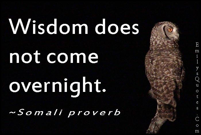 EmilysQuotes.Com - understanding, wisdom, intelligent, time, African proverb, Somali proverb