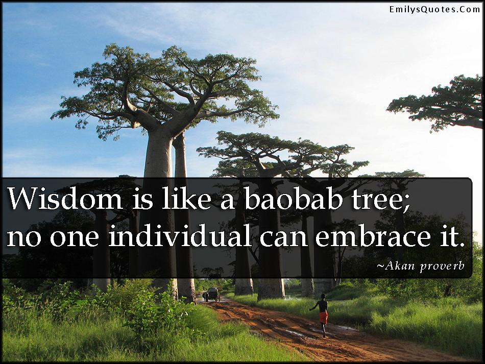 EmilysQuotes.Com - wisdom, baobab tree, understanding, emrace, African proverb, Akan proverb
