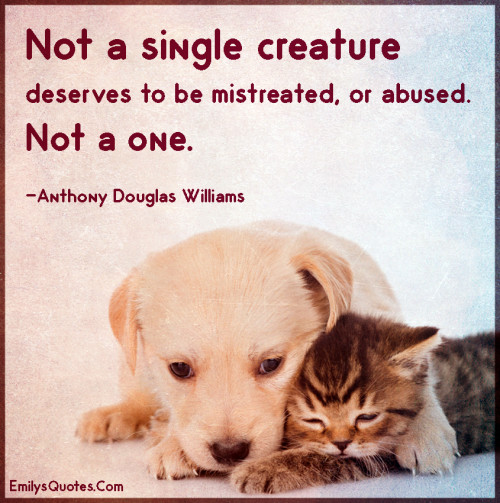 Not a single creature deserves to be mistreated, or abused. Notaone.