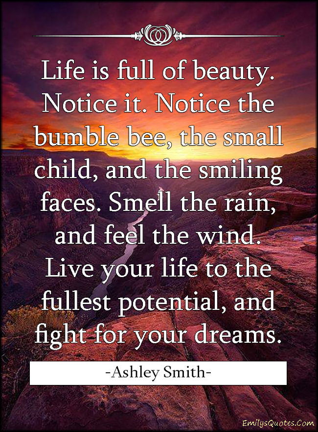 Fight For Your Life Quotes Custom Life Is Full Of Beautynotice Itnotice The Bumble Bee The