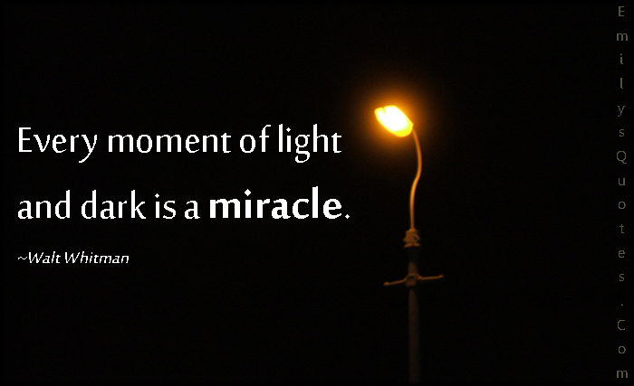 Light And Dark Quotes Gorgeous Every Moment Of Light And Dark Is A Miracle  Popular