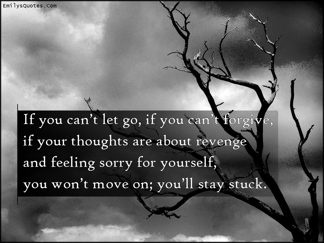 Love Move On Quotes If You Can't Let Go If You Can't Forgive If Your Thoughts Are
