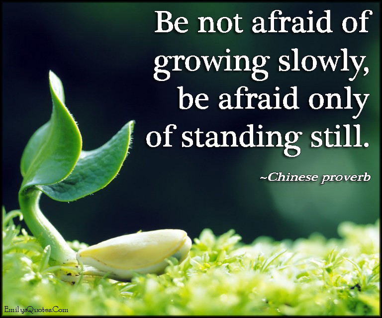 EmilysQuotes.Com - afraid, growing slowly, growing, fear, standing still, advice, wisdom, change, proverb, Chinese Proverb