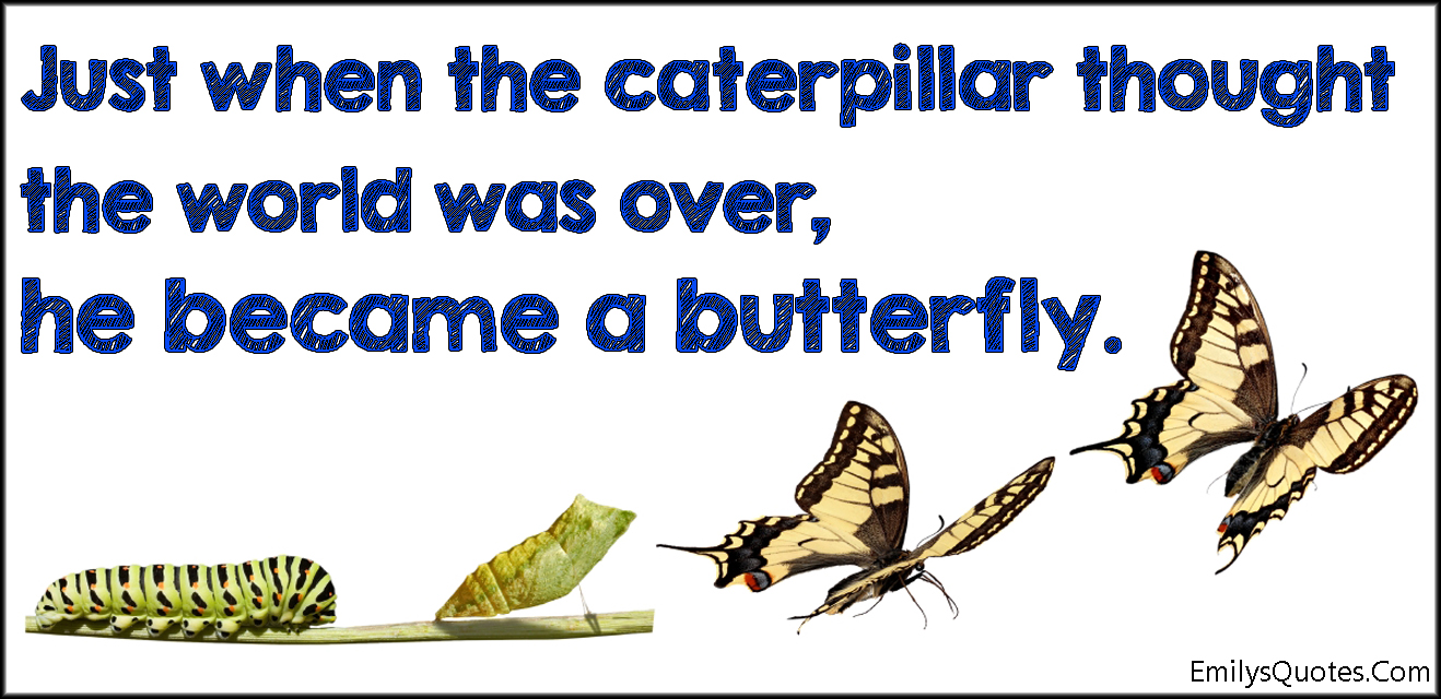 EmilysQuotes.Com - amazing, great, inspirational, caterpillar, thought, world, over, end, butterfly, hope, encouraging, unknown