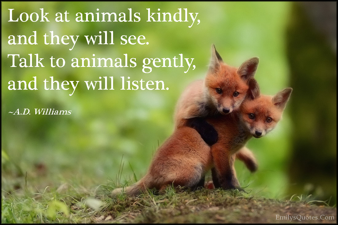 Com Animals Kindly Kindness See Talk Communication