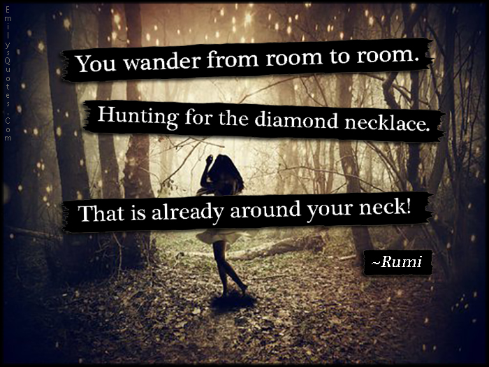 EmilysQuotes.Com - amazing, great, wander, room, hunting, diamond necklace, neck, mistake, wisdom, Rumi