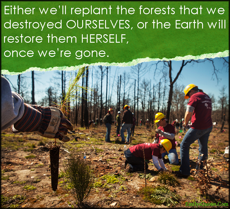 EmilysQuotes.Com - replant, forests, destroy, Earth, restore, gone, nature, consequences, humanity, unknown