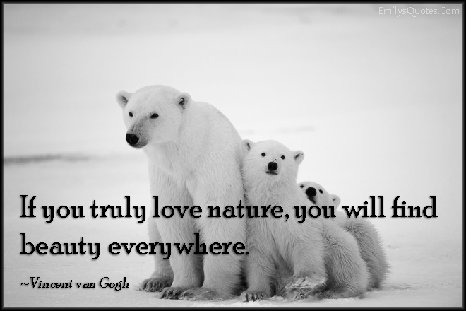 EmilysQuotes.Com - truly, love, nature, find, beauty, inspirational, amazing, great, positive, Vincent van Gogh