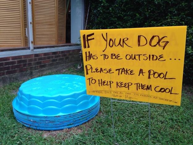 Pictures That Will Restore Your Faith In Humanity - 4. And this person put this outside their house on a particularly hot day.
