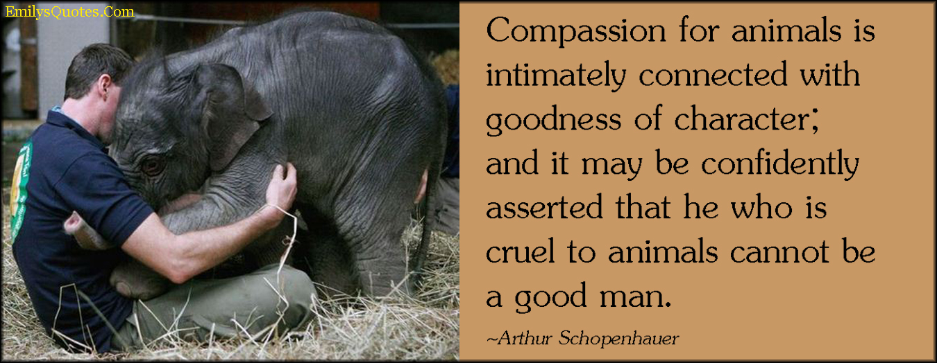 EmilysQuotes.Com - compassion, animals, goodness, character, cruel, bad man, intelligent, morality, kindness, being a good person, Arthur Schopenhauer