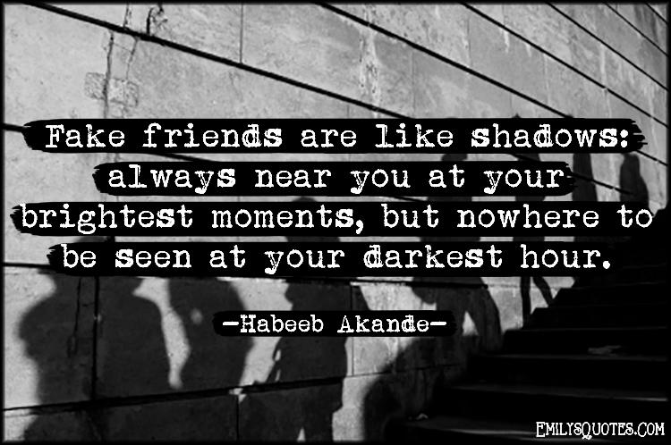 EmilysQuotes.Com - fake, friends, shadows, friendship, near, brightest moments, darkest hour, darkness, trust, Habeeb Akande