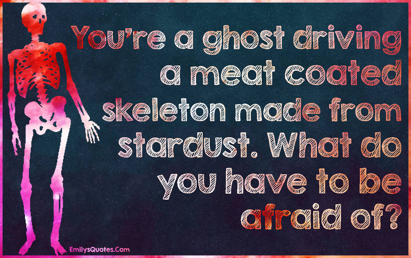 Youu0027re A Ghost Driving A Meat Coated Skeleton Made From Stardust. What Do  You Have To Be Afraid Of? | Popular Inspirational Quotes At EmilysQuotes