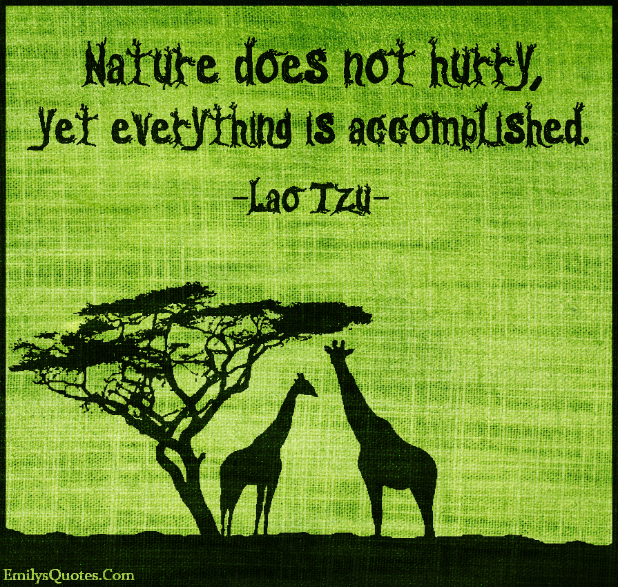 EmilysQuotes.Com - nature, hurry, accomplished, patience, inspirational, wisdom, Lao Tzu
