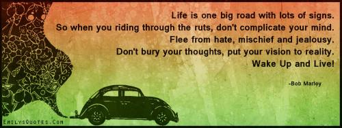 EmilysQuotes.Com-amazing,great,inspirational,life,advice,positive,hate,mischief,jealousy,Bob Marley