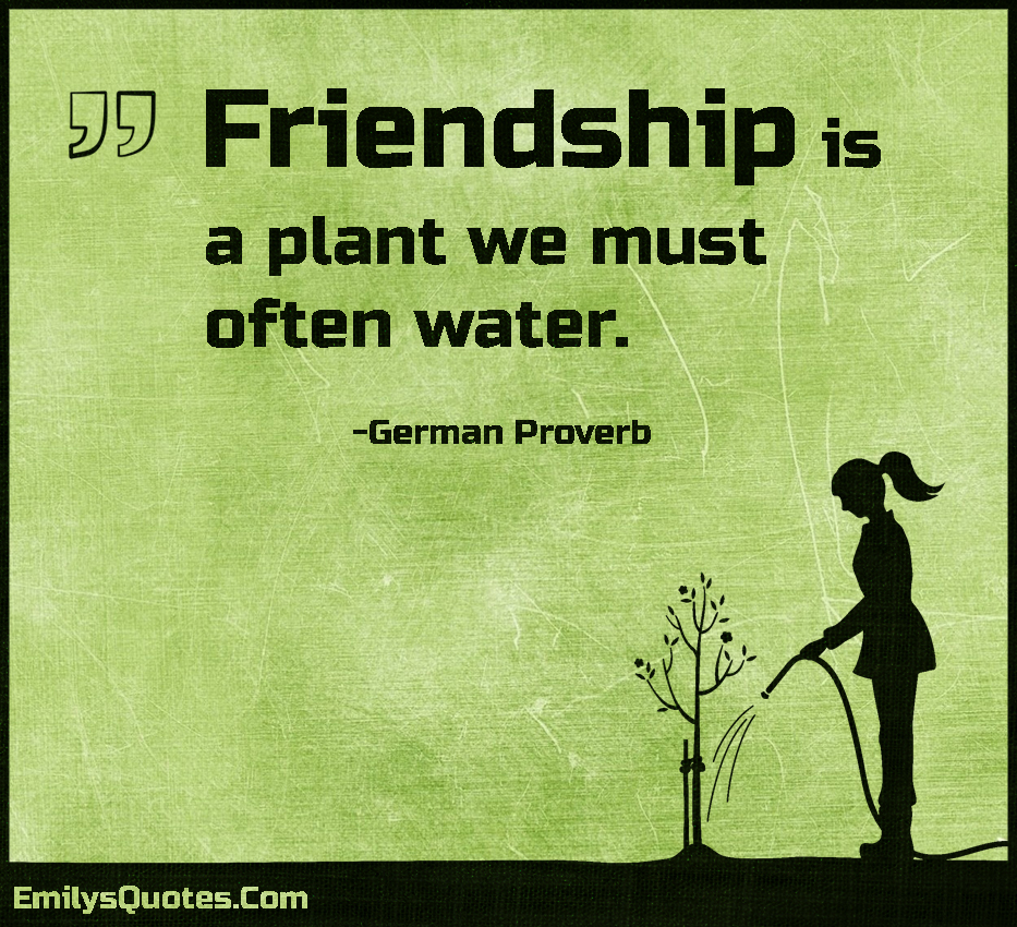 Friendship is a plant we must often water.