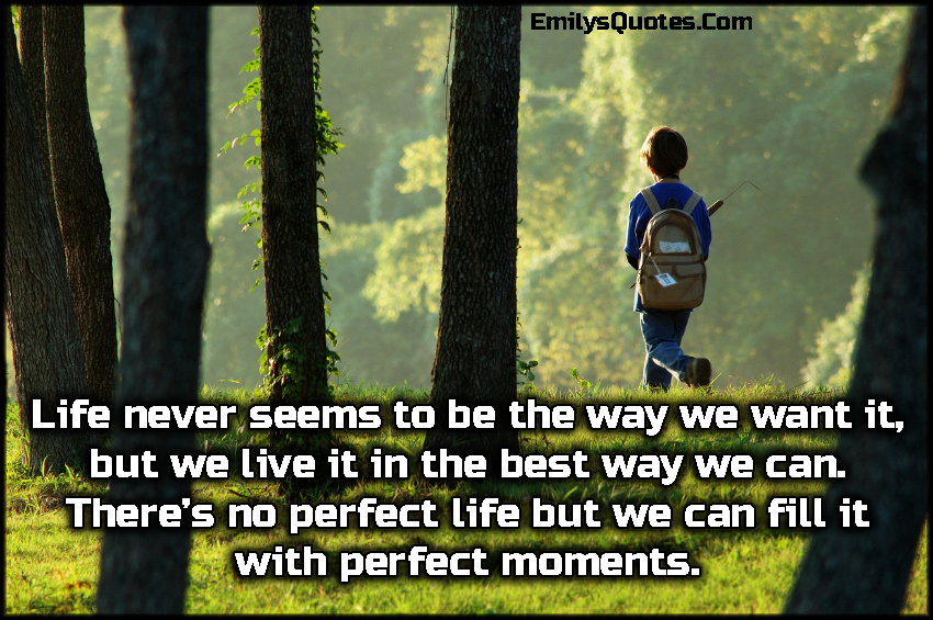 Life never seems to be the way we want it, but we live it in the best way we can. There's no perfect life but we can fill it with perfect moments.