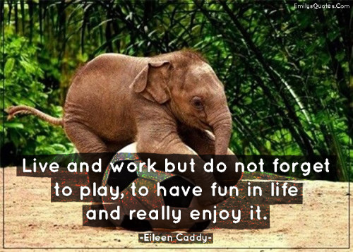 Live and work but do not forget to play, to have fun in life and really enjoy it.