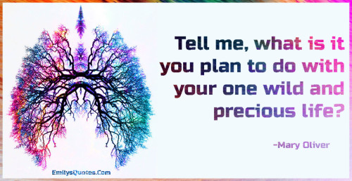 Tell me, what is it you plan to do with your one wild and precious life