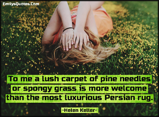 To me a lush carpet of pine needles or spongy grass is more welcome than the most luxurious Persian rug.