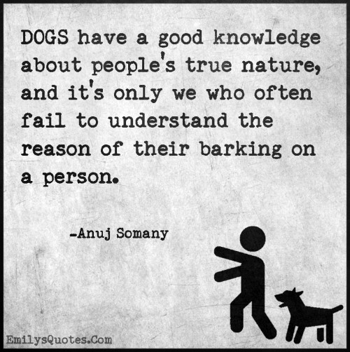 DOGS have a good knowledge about people's true nature, and it's only we who often fail to understand the reason of their barking on a person.