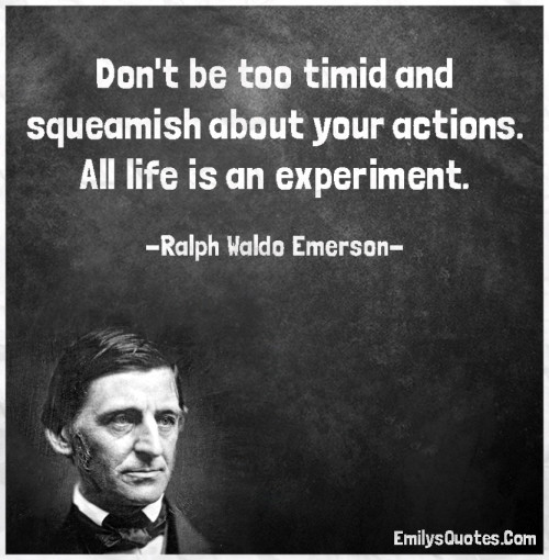 Don't be too timid and squeamish about your actions. All life is an experiment.