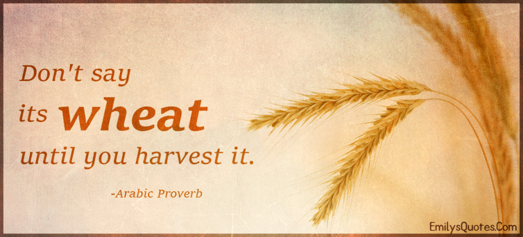 Don't say its wheat until you harvest it.