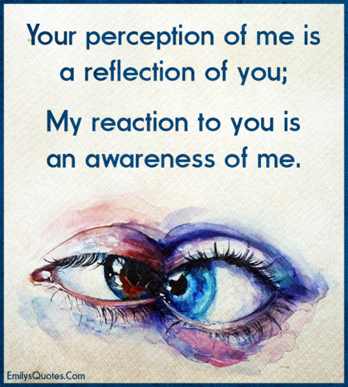 Your perception of me is a reflection of you; my reaction to you is an awareness of me.